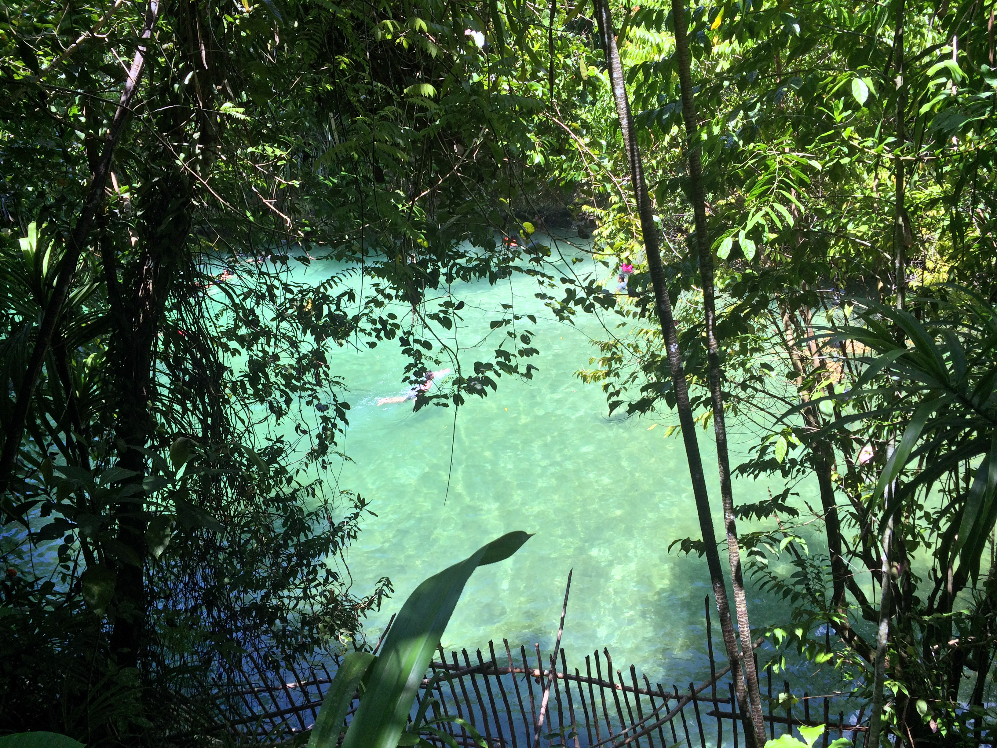 enchanted river upstream